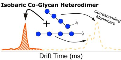 IM-MS Assessment of Cobalt-Glycan Heterodimers